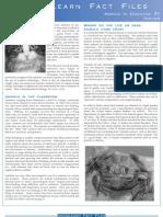 Download PDF Animals in Education Fact Sheet (#1 Teacher)