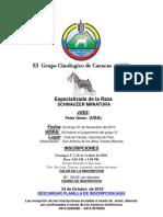 Prospecto GCC Especializada Schnauzers