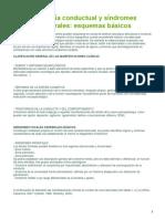 Neuroanatomía Conductual y Síndrome Frontal