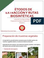 S2. Métodos de Extracción y Rutas Biosintéticas