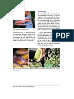 SDFGA;KJEG'Aerg.pdf