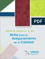 Sineace (2013).pdf