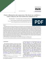 COMPRESION, INFLAMACION Y RADICULOPATIA.pdf