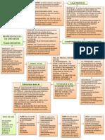 mapaconceptualredes4-140814192416-phpapp01.pdf