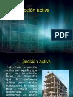 Seccion Activa