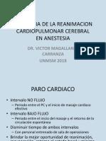 Fisiologia de La Reanimacion Cardiopulmonar Cerebral