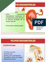 presentacion PHE
