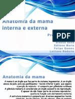 anatomia da mama.pptx