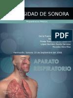 Aparato Respiratorio 97 2003