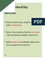 Aula 2 Vetores.pdf
