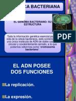 3. Genetica bacteriana