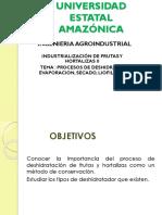 ARTÍCULO MODIFICADO - Dario Cálculo de Hielo y Resultados Microbiologicos