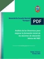 ANALISIS_DIRECTRICES_BENV.pdf