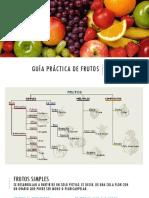 Guía Práctica de Frutos