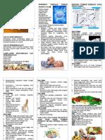 40680037 Leaflet Tumbang Kembang Anak Dan Balita