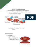 resumen-fisiologia-hematologiaaaaaa