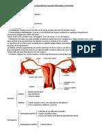 Reproductor Femenino (Histología y Anatomía)