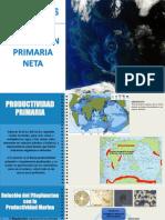 Oceanos - Produccion Primaria y Sedimentos