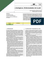 agentes irrtantes en la piel matadero.pdf