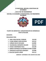 mineria informe.docx