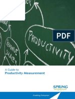 Guidebook Productivity Measurement