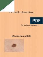 Curs 2 Dermato