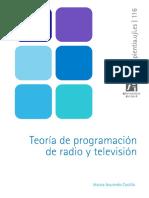 Teoria de Programacion en Radio y TV