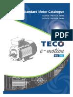 (Europe)StandardIE2IE3MotorCatalogueAESV-AESU.pdf