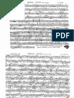 289613423-Maria-Luisa-Parti.pdf