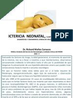 Teoría Ictericia Neonatal Degraba Completa