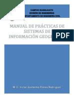 140852439-MANUAL-DE-PRACTICAS-DE-SIG.pdf