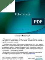 telomeraza