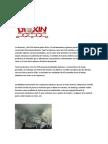 Dioxinas y PCBs
