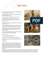 Tiger Fact Sheet FINAL
