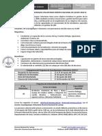 Convocatoria GPV 2018 - IV.pdf