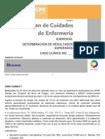Formato PLACE CPE Determinación de Resultados Esperados NOC