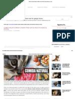 Como Hacer Comida Casera Para Gatos Receta