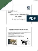 001-Origen y Evolución Del Caballo
