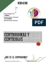 biología centriolos expo.pptx