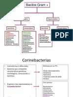 bacilosgrampositivosaerobiosnoesporulados-121011184624-phpapp02.pdf