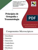 Aula 1 - Princípios de Ortopedia