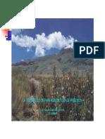 4- Sensores remotos agricultura (Gonzalez A).pdf