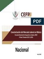 Caracterización Del Mercado Laboral