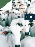 Cadeia Produtiva da Carne Bovina c capa.pdf