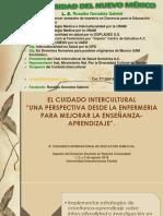 """EL CUIDADO INTERCULTURAL""""UNA PERSPECTIVA DESDE LA ENFERMERIA PARA MEJORAR LA ENSEÑANZA-APRENDIZAJE"""".L.E. Rosalba Gonzalez Gabriel"""