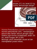 Hipofisis Anterior