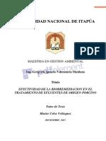 BIORREMEDIACIÓN-Copiar.pdf