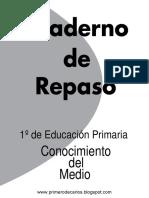 cono.pdf
