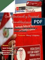 Habeas Corpus Preventivo y Traslativo
