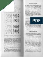 estimacion visual de porcentajes.pdf